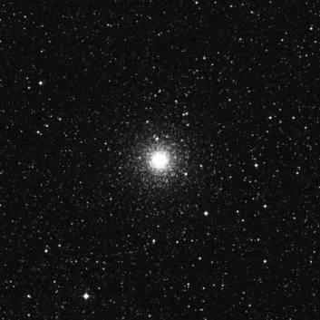 Hawaiian Astronomical Society - Scorpius